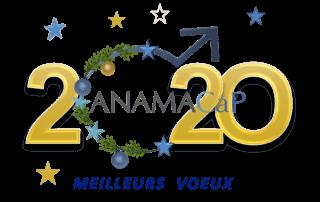 Voeux ANAMACaP 2020