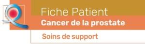 Fiche outil patient cancer prostate soins de support